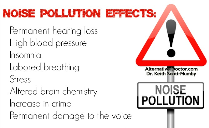 Noise Pollution Effects Infographic