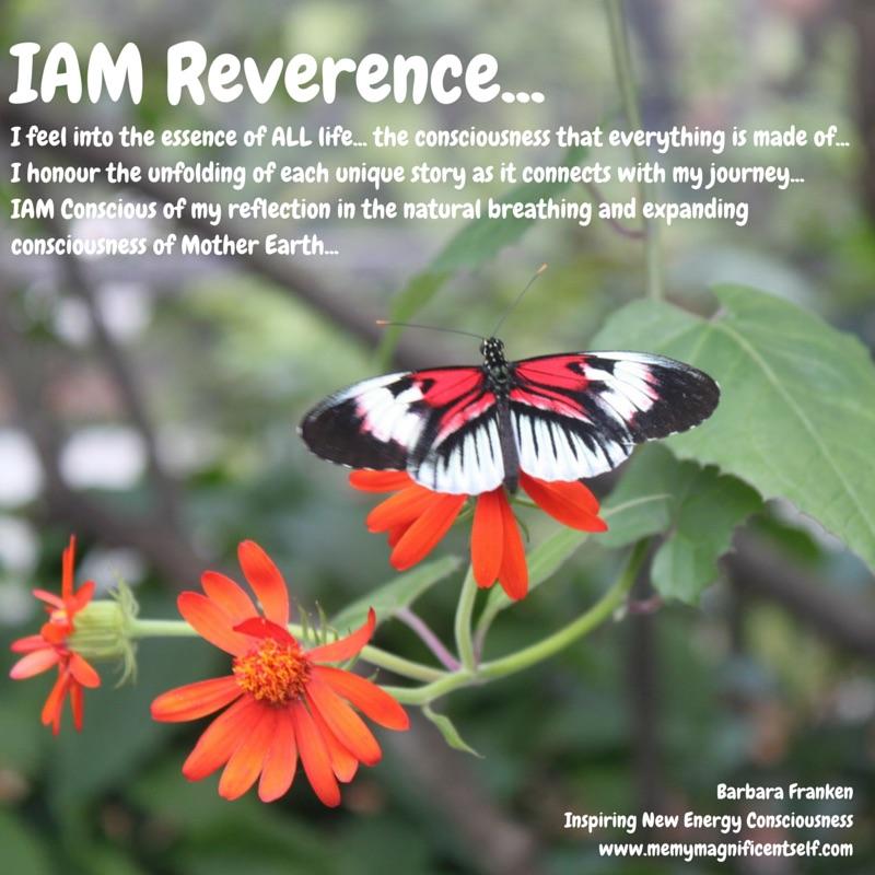 IAM Reverence