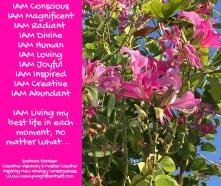 IAM Conscious...