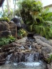 Waterfall features like this one can be found along the footpaths of Waikiki.