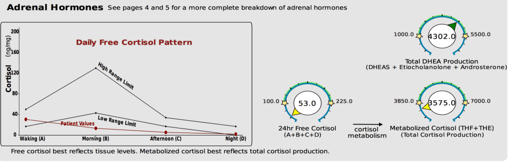 Cortisol variation