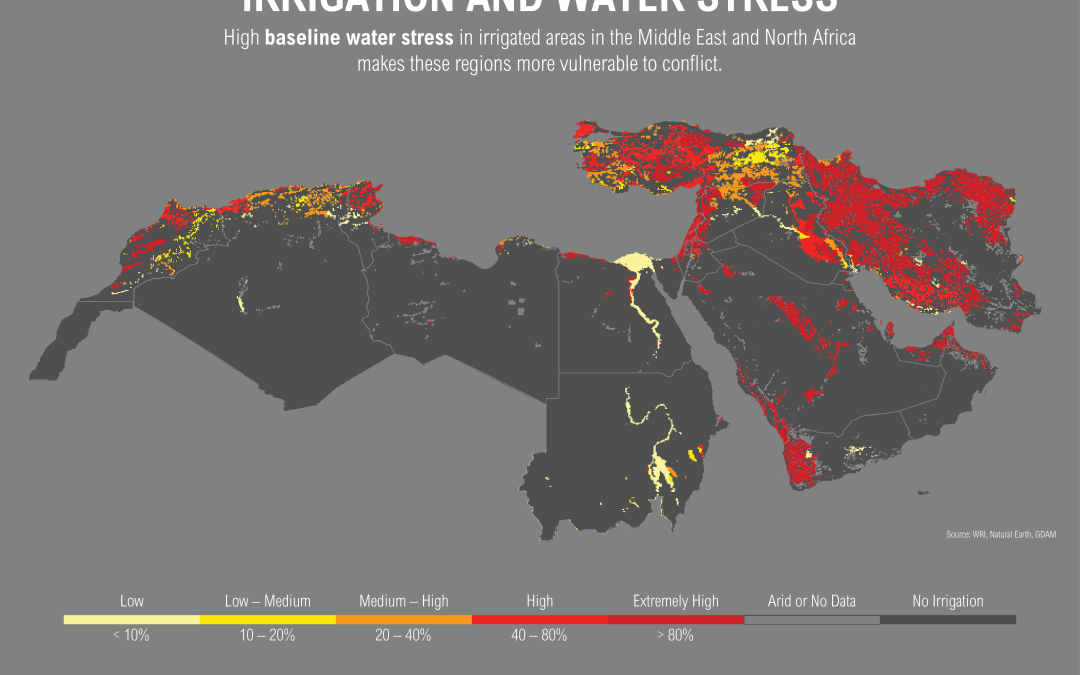 Water Security in the MENA region