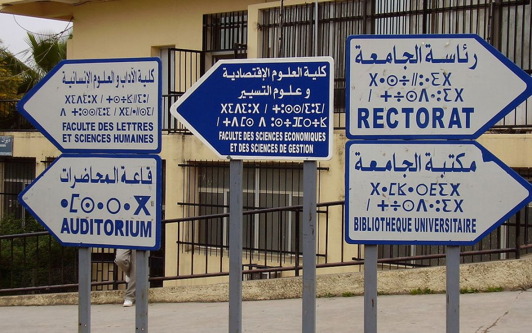Algeria's new road-map for higher education