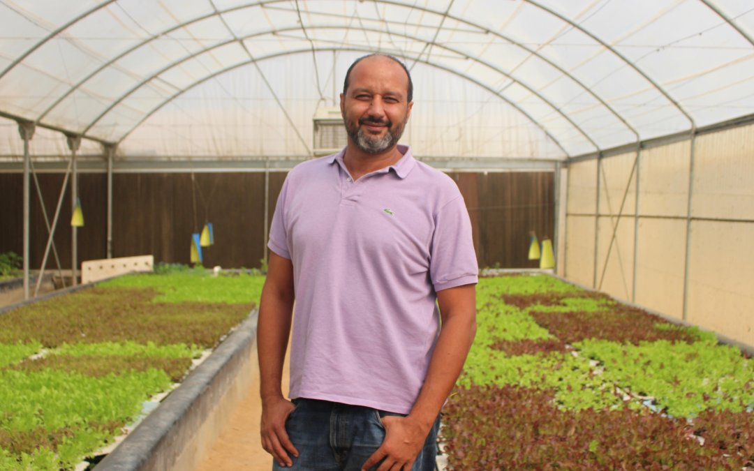 Egypt-Based Bustan Aquaponics Is Taking A Socially Responsible Route Towards Food Security