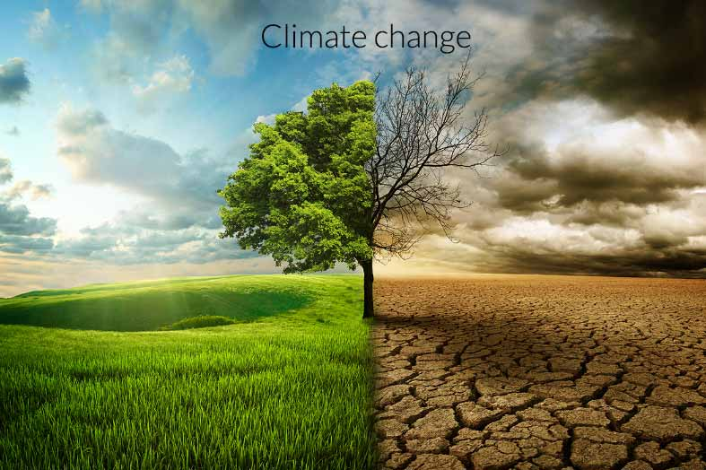 The World is losing the battle on Climate Change