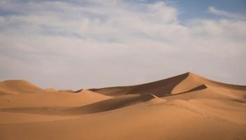 Extreme Environments: farming in the Sahara Desert