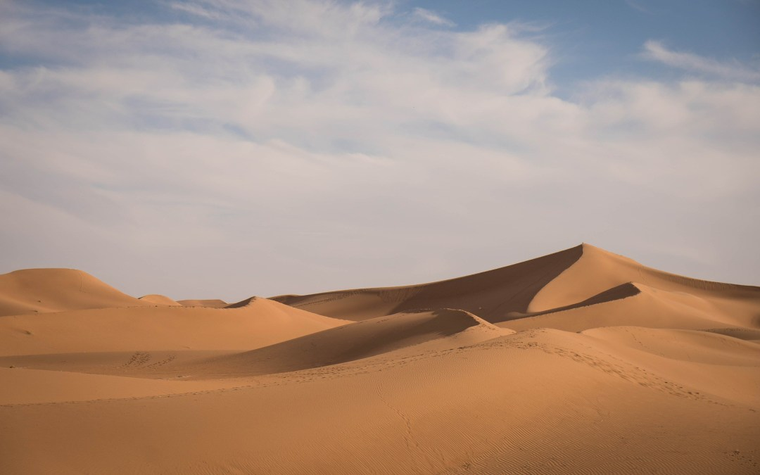 Extreme Environments: farming in the Sahara Desert