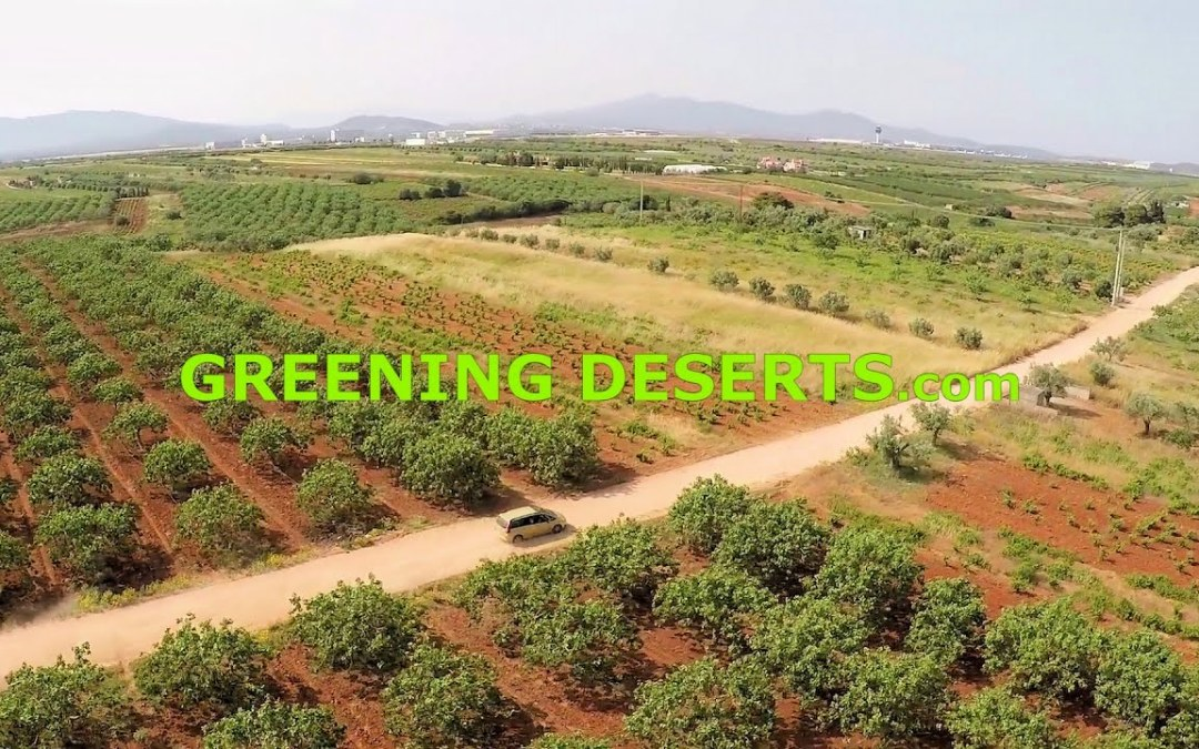 The Greening of the Earth approaching its Limit