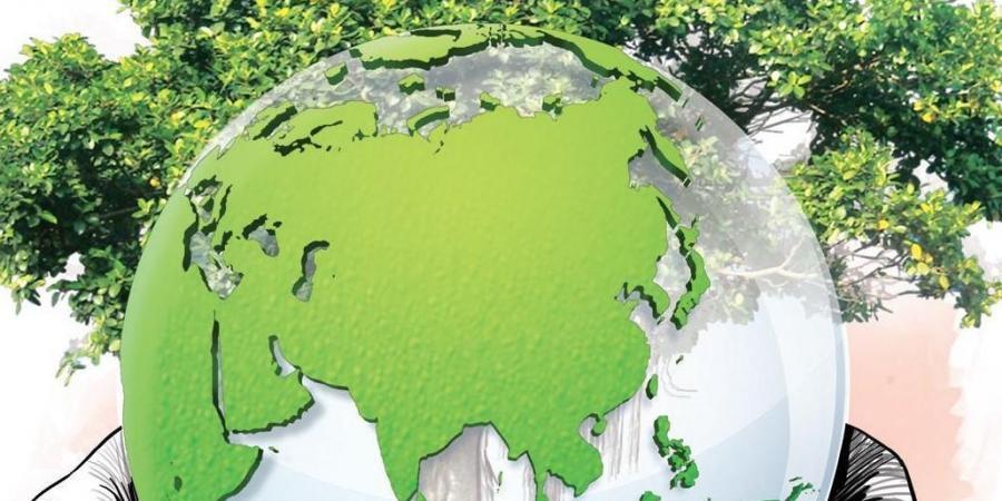 World Environment Day: Missionrestoration