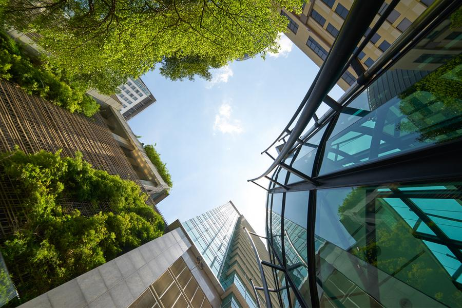 A greener construction sector?