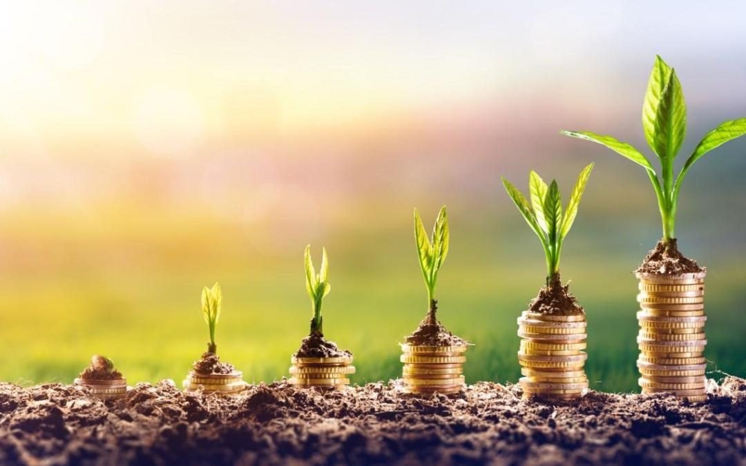 Key combination for corporates targeting successful sustainability breakthroughs