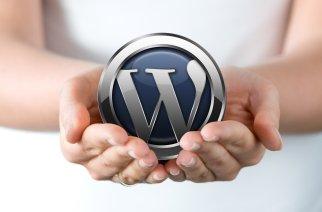 10 Best Multipurpose WordPress Themes