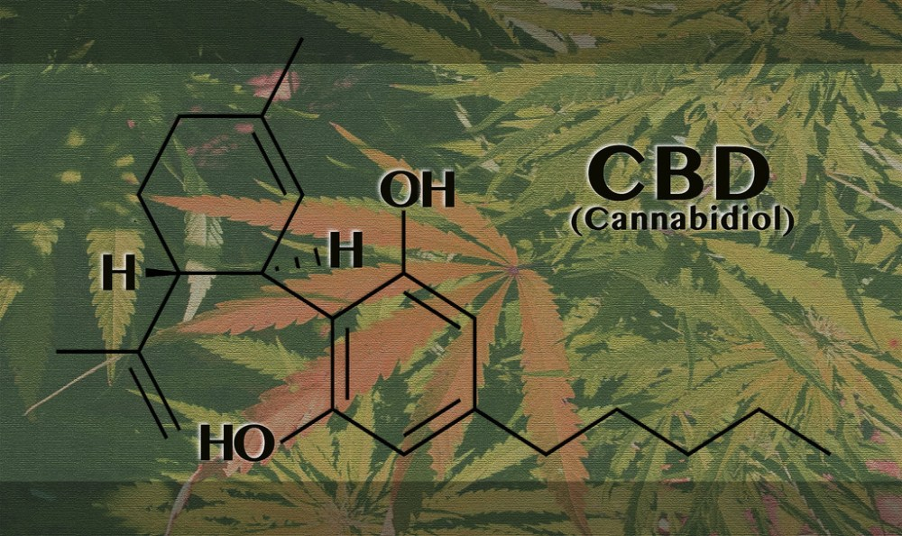Complete Guide and Some Untold Facts about Cannabidiol