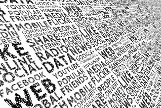 Social Media: The Millennial Hub