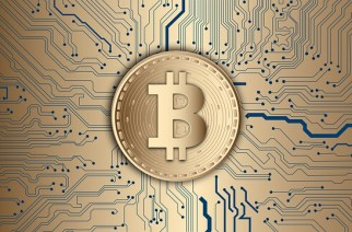 Bitcoin Processing Units for Mining Digital Currency