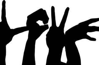 Why Learn Baby Sign Language from an Expert?