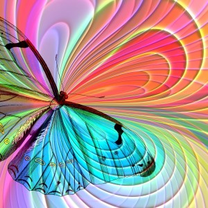 Rituelle Butterfly Tranformation