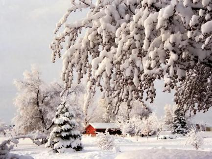 Snowy red barn