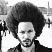 ultra cool afro hairstyles