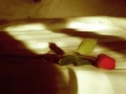ruza krevet