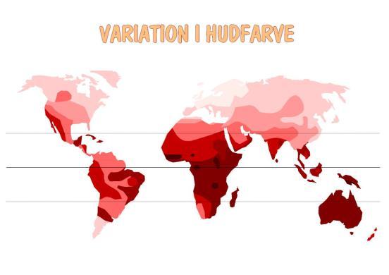 Den geografiske fordeling af hudfarve. De mørkeste farver svarer til geografiske områder, hvor menneskets hud er stærkest pigmenteret (Centralafrika og Melanesien). Den lyseste hud findes i Nordvesteuropa