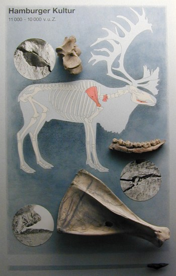 Fra udstillingen på Gottorp slot