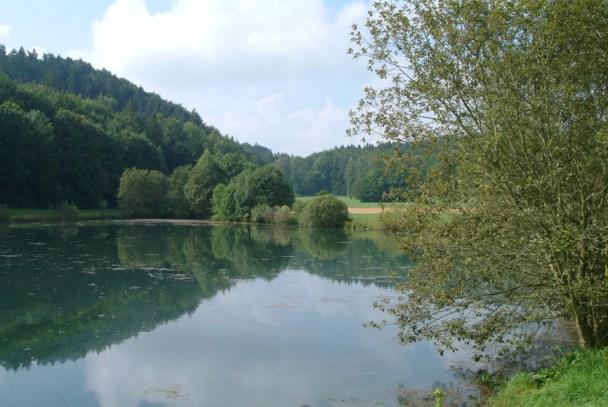 Hvor skovvejen til Hohlensteinhulen begynder