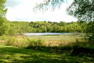 Skallerund sø ved Klosterlund Museum