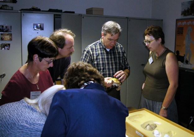 Krapina-fossiler studeres af  Fred Smith, Zagreb 2002