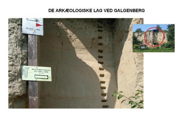 KULTURLAGENE VED GALGENBERG