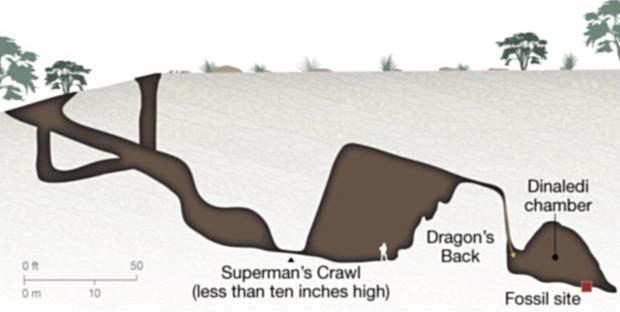 Denaledi hulesystemet