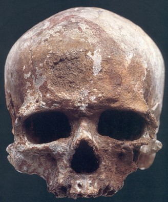 Tidlig Homo sapiens, Cro-Magnon, Frankrig, 30.000 år