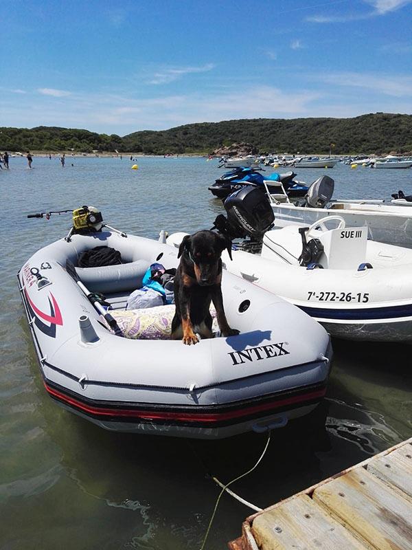 alquiler embarcacion sin titulacion 330 Menorca New Rent