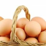 糖質制限で卵を何個までなら食べてもいいか?食べ過ぎを心配