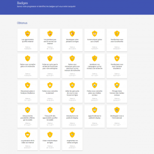 mensahmaster certification module - TOP 5 raisons de faire la certification Digital Active de Google