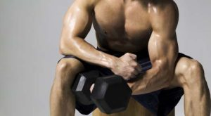 Get Ripped with the Weight Circuit Workout