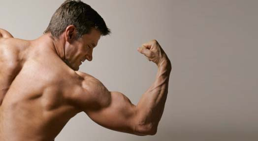 Does Weight Training Increase Bone Density