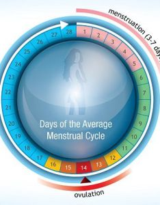 Menstrual cycle calculator calculate your period ovulation and due date also rh