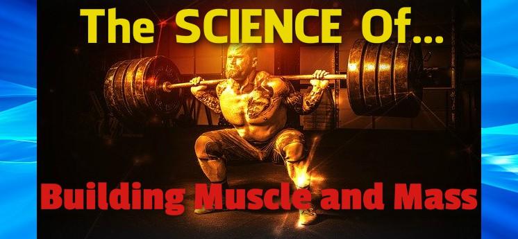 Science of Building Muscle and Gaining Mass