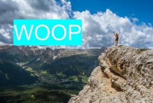 WOOP 計画 通り 行動 方法