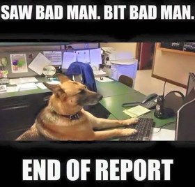 Police Dog writing report meme