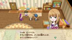 Story of Seasons Friends of Mineral Town