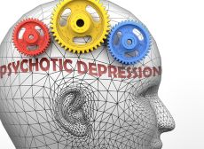 Colour image of model head with 3 cogs - psychotic depression