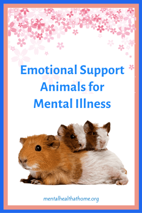 Emotional support animals for mental illness - graphic of a mom and 2 baby guinea pigs