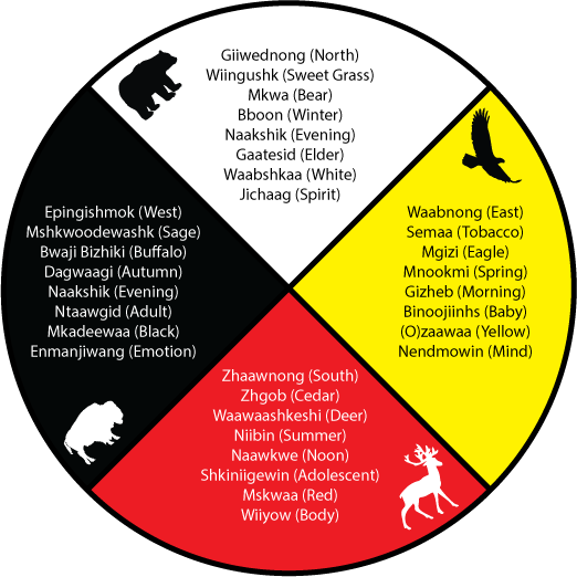 The Medicine Wheel from the Curve Lake Cultural Centre