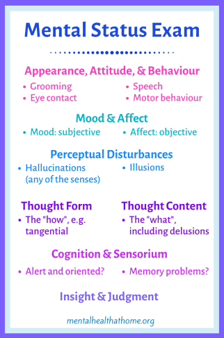Components of the mental status exam