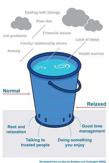 Diagram of the stress bucket model
