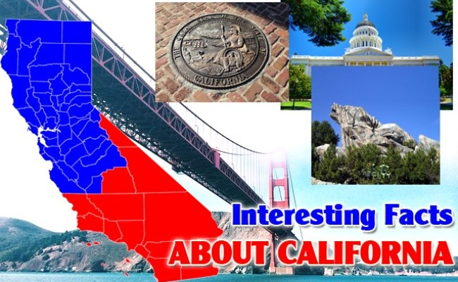 Interesting Facts About California Mental Itch