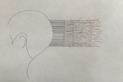 「図解」髪の量をとりすぎるとハネやすくなる