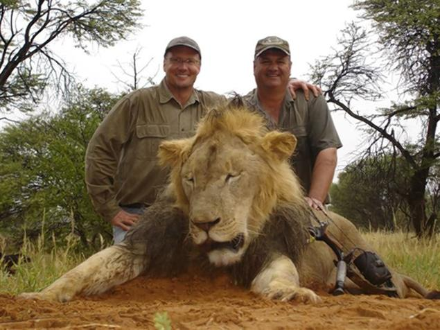dentist dr walter j Palmer contacts us fish and wildlife authorities after killing cecil the lion in zimbabwe